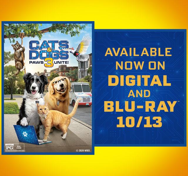 https://bit.ly/CatsDogs3_MovieWBHE