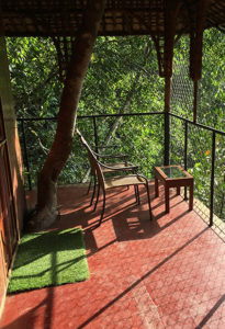 Vythiri Treehouse Resort Balcony